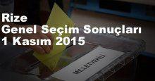 Rize Seçim Sonuçları, 2015 Genel seçim sonuçları