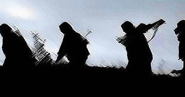 Siirt'te PKK'ya darbe