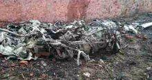 Hindistan'da uçak kazası, 10 ölü