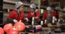 Ruslar stok yaptı, meyve ihracatı arttı