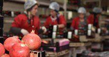 Rusya ürün stokladı fiyatlar uçtu