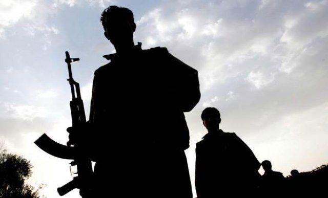 İdil'de sona eren terör operasyonda 2 yönetici öldürüldü