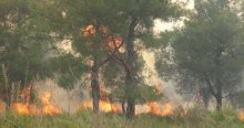 Hatay'da 25 hektar alan kül oldu