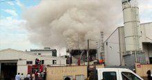 Plastik çim üretim fabrikasında yangın