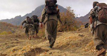 147 PKK'lı terörist öldürüldü