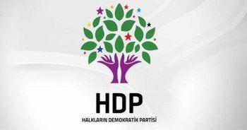 HDP'li Eş Başkan tutuklandı