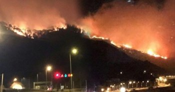 Trabzon Sürmene'deki orman yangını kontrol altına alındı