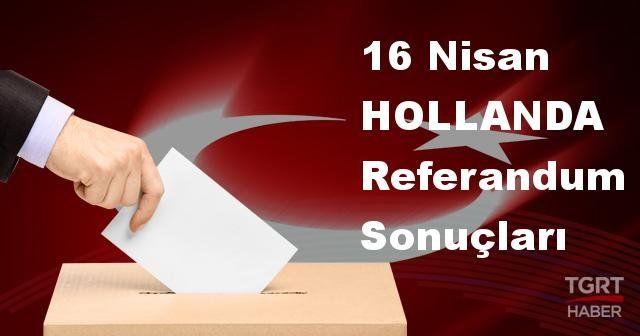 HOLLANDA 2017 referandum seçim sonuçları | HOLLANDA oy sonuçları! | Evet - Hayır oranı