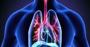 Light sigaradan sonra kanser vakaları arttı