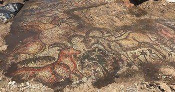 Adıyaman'da 1600 yıllık mozaik bulundu