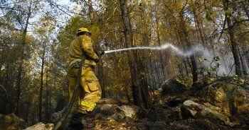 'Orman yangınlarının yüzde 76'sı 11.00-19.00 saatlerinde çıkıyor'