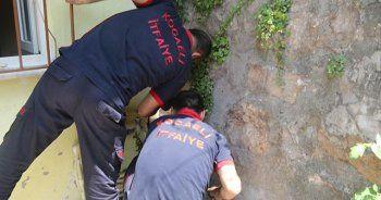 Duvarların arasına sıkışan yavru köpeği itfaiye kurtardı
