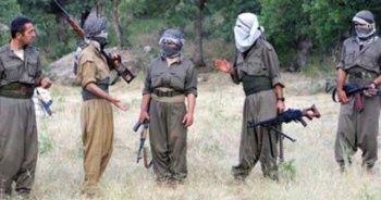 PKK'dan vahşi infaz! Bekçinin kardeşini ağaca bağlayıp yaktılar
