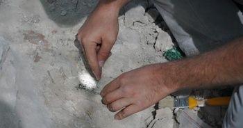 Kapadokya'da 9 milyon yıllık fosiller gün yüzüne çıkarılıyor