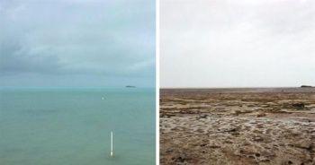 Kasırga sonrası korkutan görüntü ! Okyanus bu hale geldi