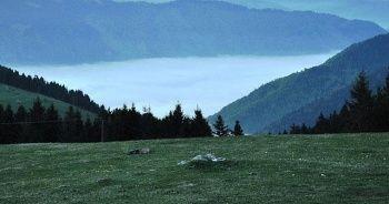 Türkiye'nin 222. Tabiat Parkı Giresun'da ilan edildi