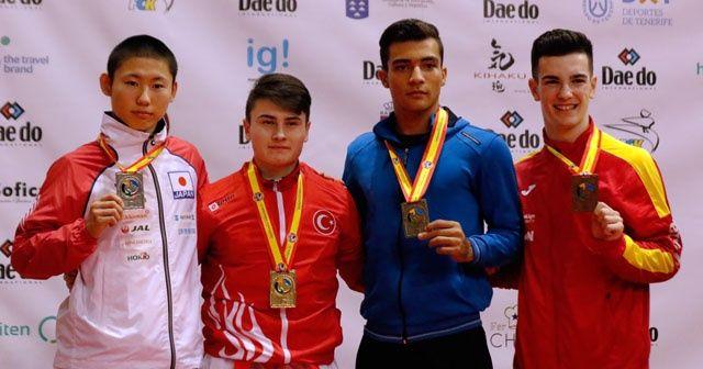 Enes Özdemir, Dünya şampiyonu