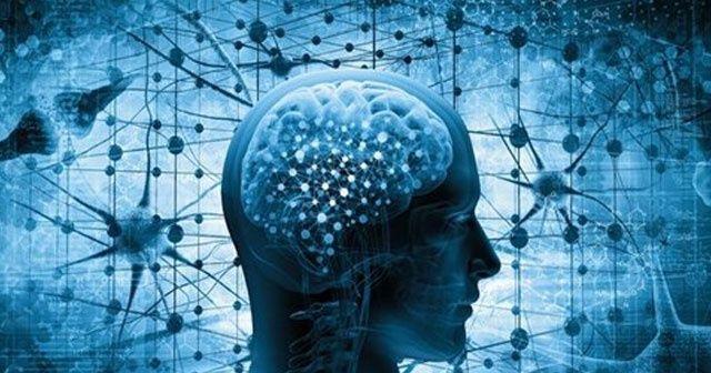 Beyin felcinde umut veren teknik: Sinir Transferi
