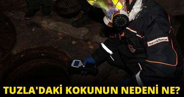 İstanbul Tuzla'da kokunun nedeni ne belli oldu mu? Tuzla'da neler oluyor İBB'den açıklama