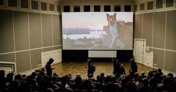'İstanbul kedileri' Rus sinemalarında