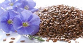 Keten tohumu nedir, Keten tohumunun faydaları nelerdir?