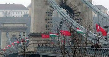 Ülke bunu tartışıyor: Türklerle akraba mıyız?