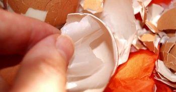 Yumurta zarı eklem ağrılarını yüzde 70 azaltıyor