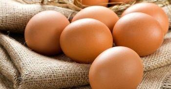Yumurtanın kodu 3 ile başlıyorsa almayın