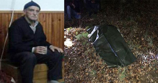 Mantar toplamaya giden yaşlı adamın cesedi bulundu