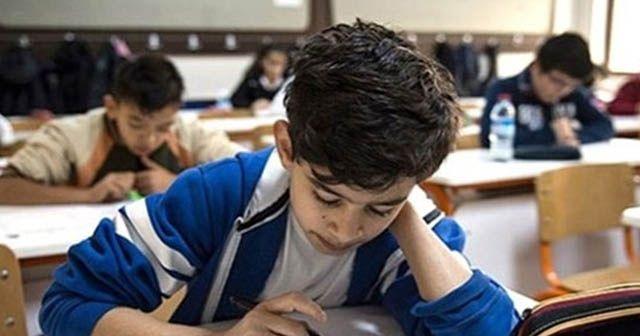 Okullarda iki yeni dil eğitimi daha verilecek