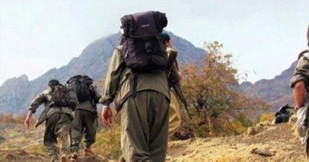 Şırnak'ta 12 terörist etkisiz hale getirildi