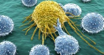 Bilim İnsanından Müthiş Buluş: Kanser hücreleri aç bırakılıyor