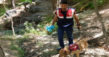 Kaybolan Ufuk'u arama çalışmaları 141 kişiyle sürüyor