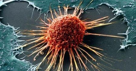 Kanser hastalarının tedavisi ücretsiz oldu