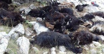 Isparta'da yıldırım düştü: Keçiler telef oldu