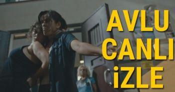 AVLU Son Bölüm İZLE Star Tv: Avlu 13. Son Yeni Bölüm Youtube,Puhu Tv | Avlu Fragman