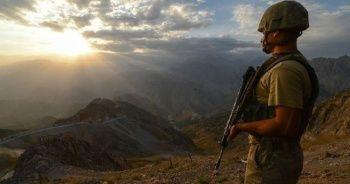 Mardin'de 2 terörist etkisiz hale getirildi