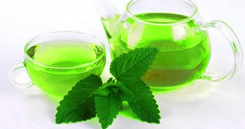 Melisa çayı faydaları ve zararlarınelerdir? İbrahim saraçoğlu