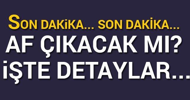 SON DAKİKA: AF HABERLERİ MHP Lideri Devlet Bahçeli açıklaması: 'MHP olarak af yasası ile ilgili teklifi Meclise verdik'