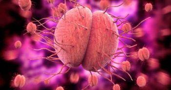 Bel Soğukluğu Belirtileri Erkeklerde ve Kadınlarda Bel Soğukluğu Tedavisi