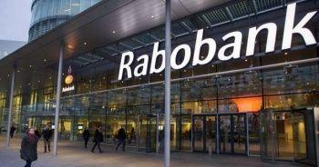 Rabobank: Dolar/TL yıl sonuna kadar 5 TL'ye gerileyebilir