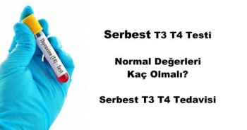 Serbest T3 T4 kaç olmalı nasıl düşürülür? T3 düşüklüğü ne anlama gelir tedavisi
