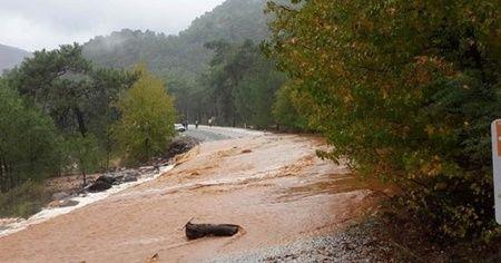 Muğla Köyceğiz'de yolları su bastı!