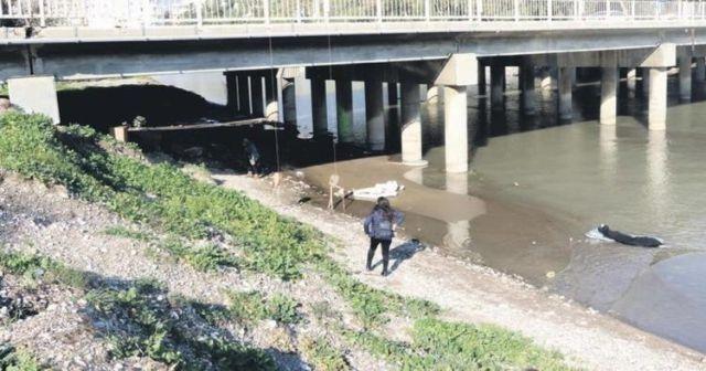 Nehirde gören ceset sandı! Gerçek sonra ortaya çıktı