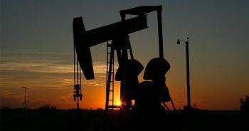 Katar, 2019 yılında OPEC`ten çekilecek