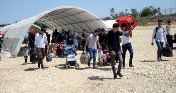 Türkiye'deki Suriyelilerin sayısı ne kadar? Süleyman Soylu açıkladı