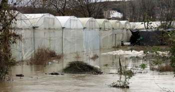 Yalova'da dere taştı, 50 sera sular altında kaldı