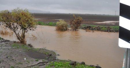 Şiddetli yağış nedeniyle buğday tarlaları gölete döndü