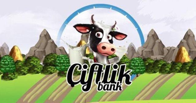 Çiftlik Bank'ın sosyal medya sorumlusu yakalandı