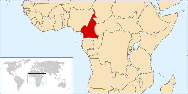 Kamerun'un kuzeyindeki nehirde 11 ceset bulundu